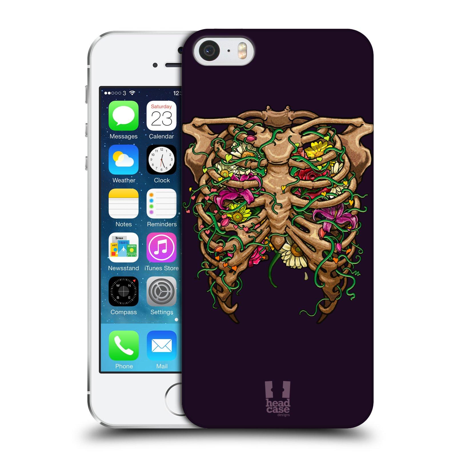 Anatomy Of Iphone 5