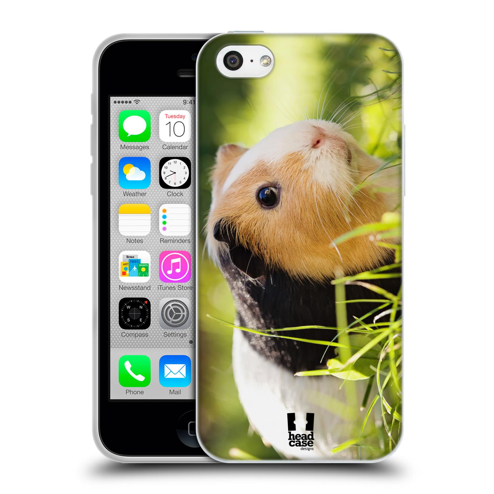HEAD CASE silikonový obal na mobil Apple Iphone 5C vzor slavná zvířata foto morče