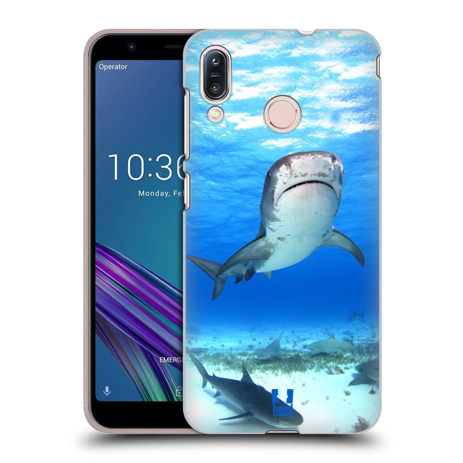 Pouzdro na mobil Asus Zenfone Max M1 (ZB555KL) - HEAD CASE - vzor slavná zvířata foto žralok tygří