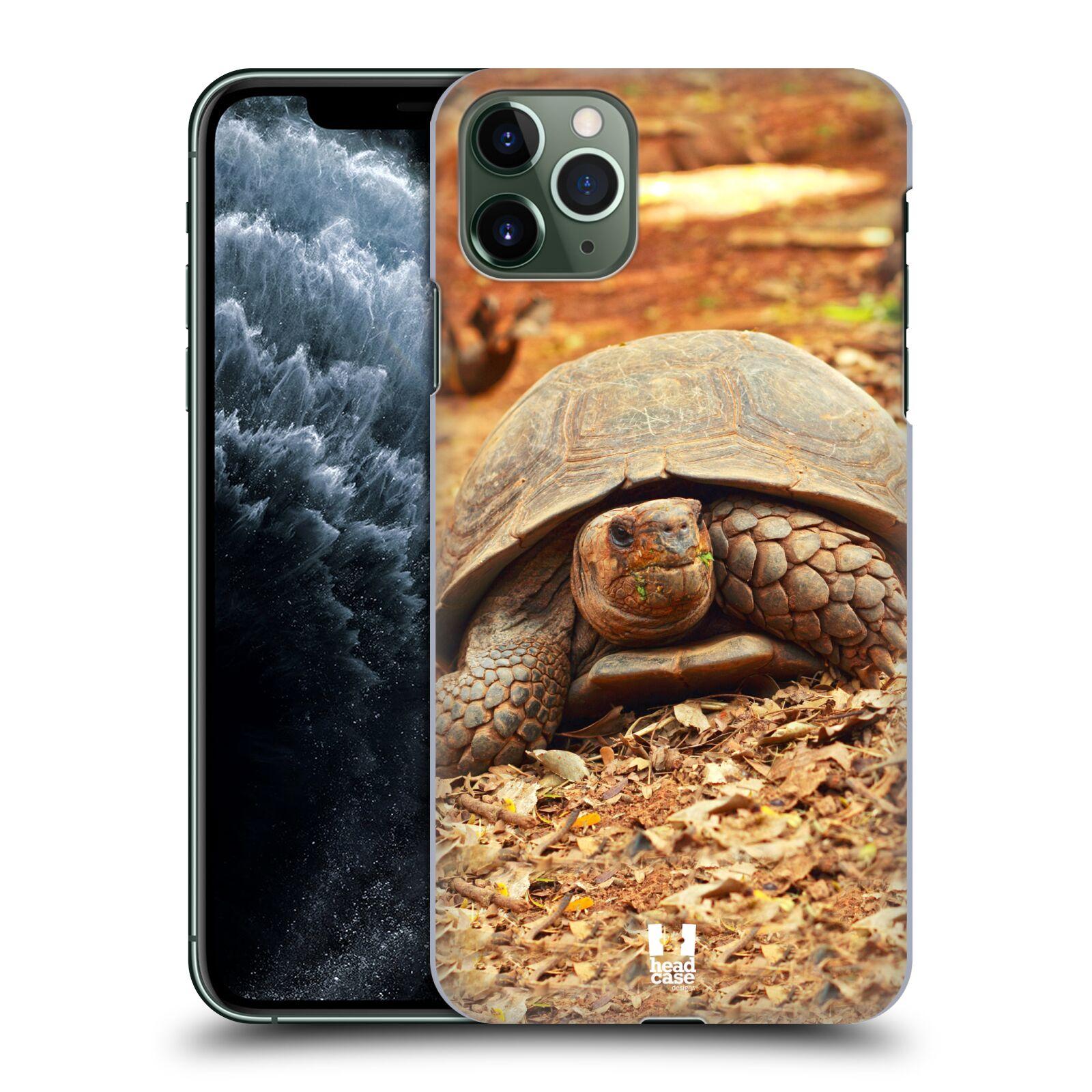 Pouzdro na mobil Apple Iphone 11 PRO MAX - HEAD CASE - vzor slavná zvířata foto želva