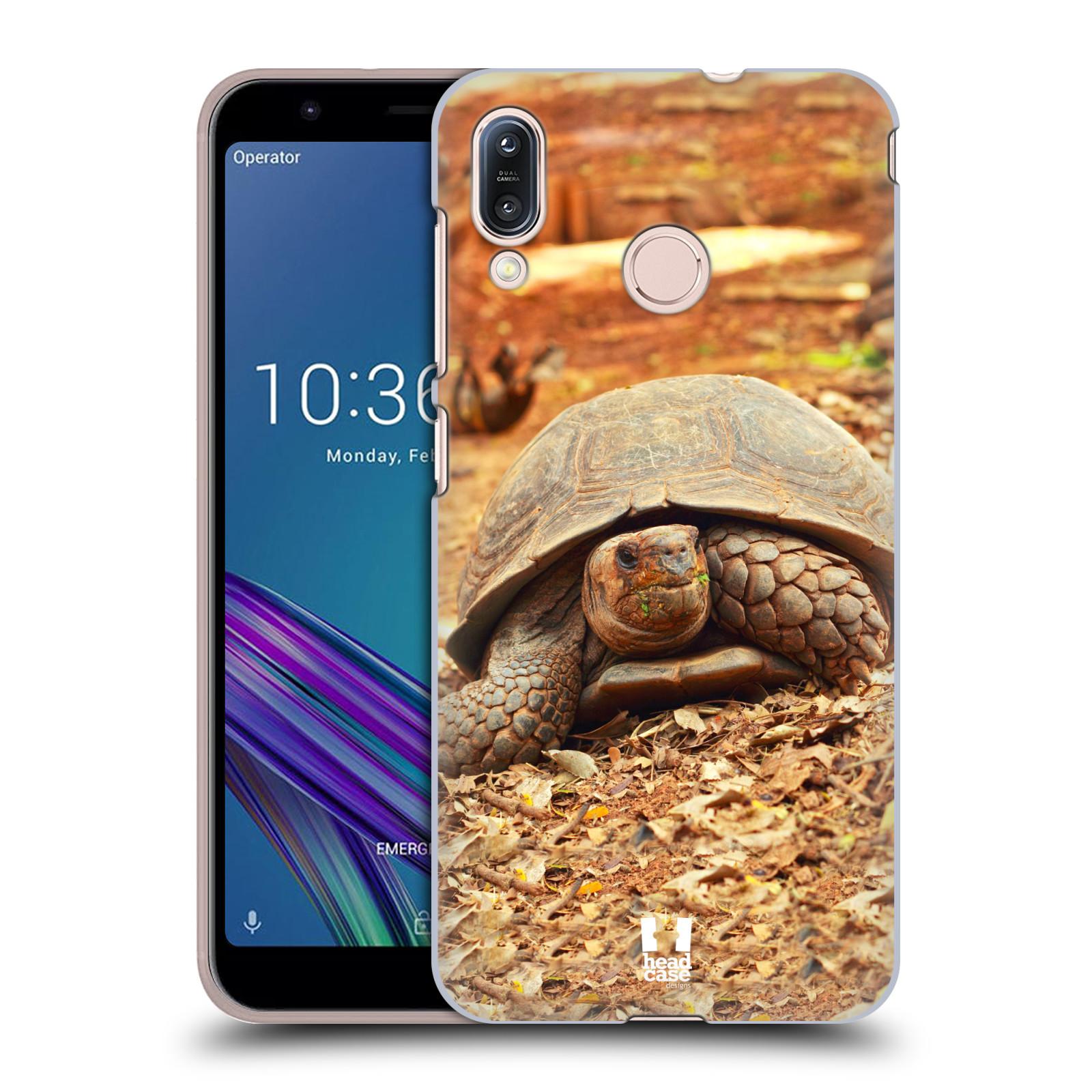 Pouzdro na mobil Asus Zenfone Max M1 (ZB555KL) - HEAD CASE - vzor slavná zvířata foto želva