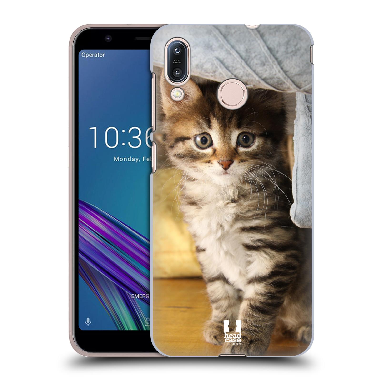 Pouzdro na mobil Asus Zenfone Max M1 (ZB555KL) - HEAD CASE - vzor Kočičky koťata foto mourek