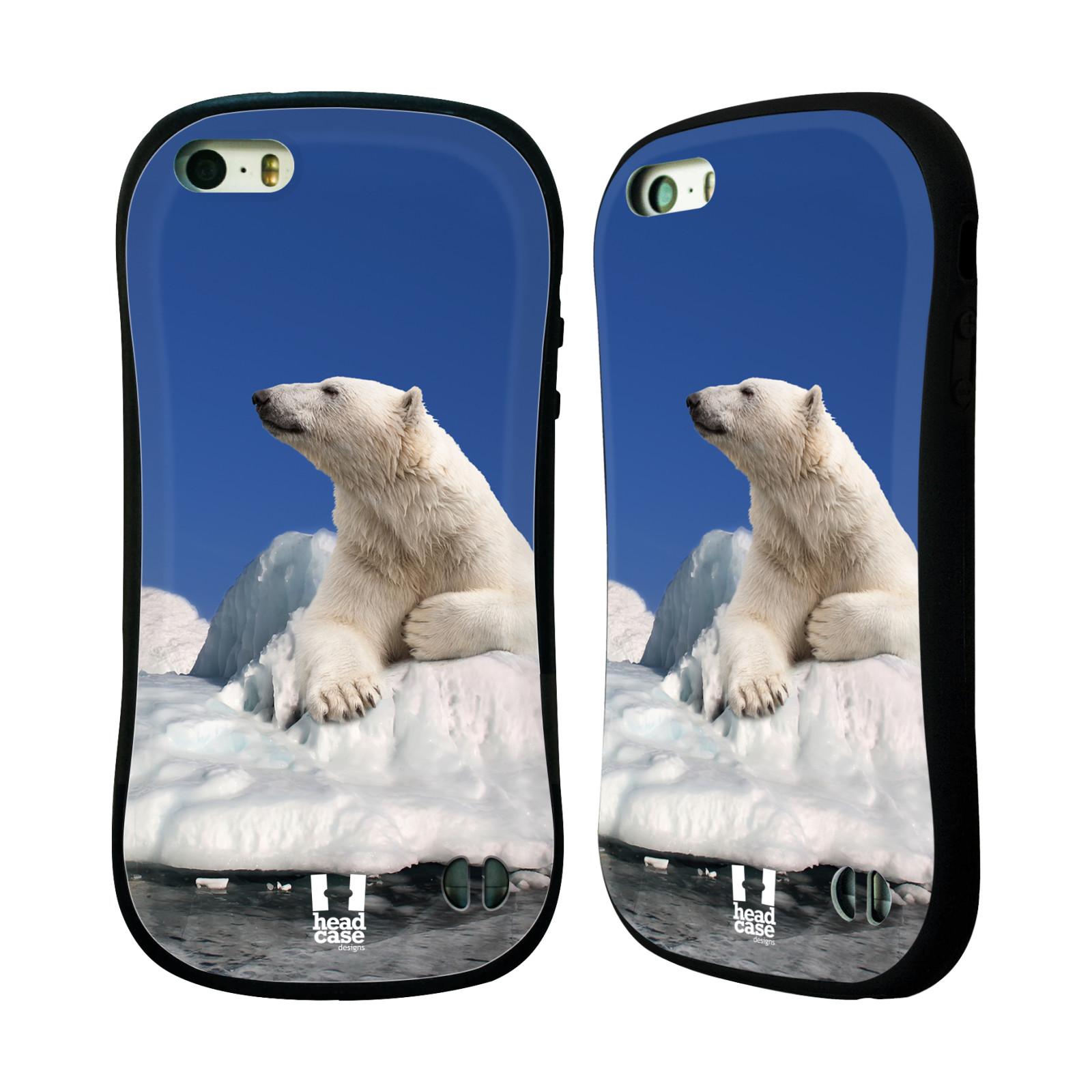HEAD CASE silikon/plast odolný obal na mobil Apple Iphone 5/5S vzor Divočina, Divoký život a zvířata foto LEDNÍ MEDVĚD NA LEDOVCI A NEBE MODRÁ