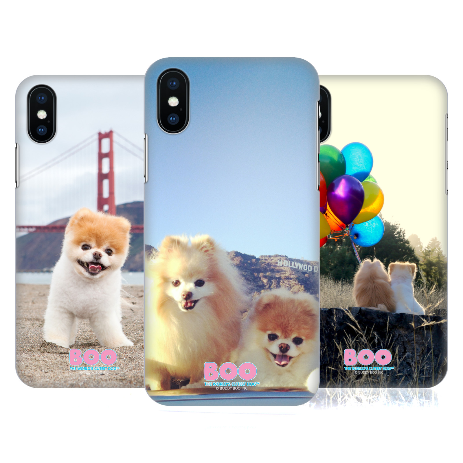 Boo-The World's Cutest Dog Adventure