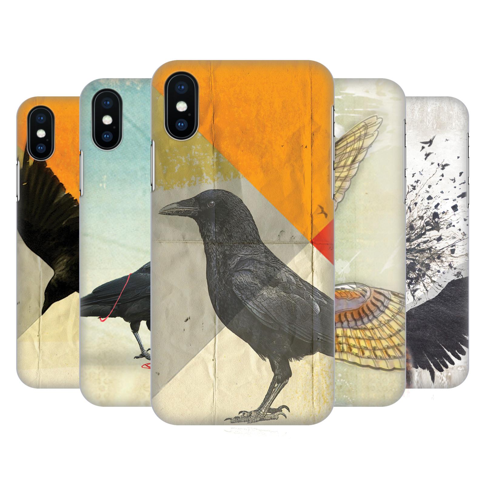Vin Zzep Birds